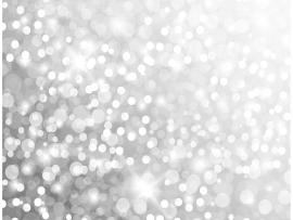 Silver Glitter Vector Presentation Backgrounds