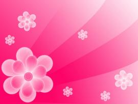 Simple Abstract Pink Flower Backgrounds