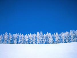 Snow image Backgrounds