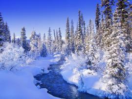 Snow Landscape  Design Backgrounds