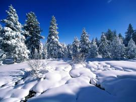 Snow Template Clipart Backgrounds
