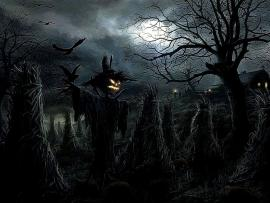 Spooky Halloween  Best Free Hd Picture Backgrounds