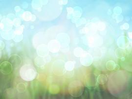 Spring Picture Backgrounds