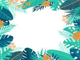 Summer Design Vector Slides Backgrounds