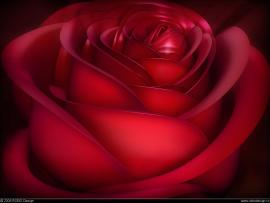 Tags 3d Love 3d Loves 3d Loves For   Clip Art Backgrounds
