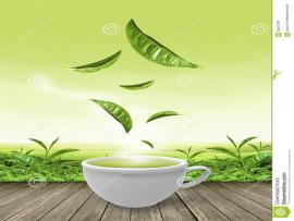 Tea Cup Green Tea Cup On Wooden Floor Stock   Template Backgrounds
