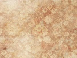 Texture Floral Texture  HD Picture Backgrounds