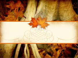 Thanksgiving PowerPoint Template  Fall Thanksgiving PowerPoints Backgrounds