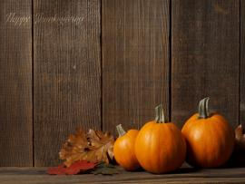 Thanksgiving Quality Backgrounds