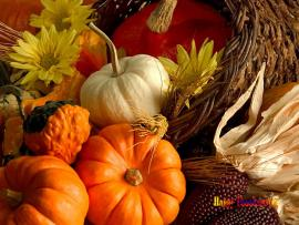 Thanksgiving Slides Backgrounds