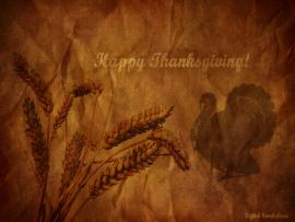 Thanksgivings October 2010 Graphic Backgrounds