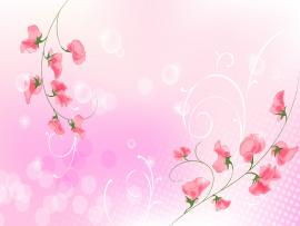 The  Two Red Branches Of Flower and Light Pink   Picture Backgrounds