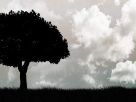 Tree Black and White Design Backgrounds