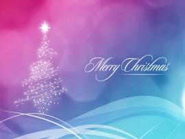 Tree Merry Christmas Photo Backgrounds