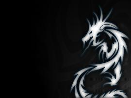 Tribal Dragon Picture Photo Backgrounds