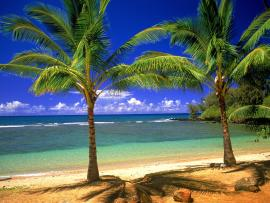 Tropical Lagoons  HDs Quality Backgrounds