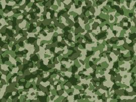 Universal Camouflage Pattern Winter Pixel Camouflage Blue Jeans   image Backgrounds