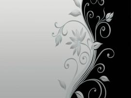 Vector Flower Black and White HD Of Vector  Hdwallpaper2013   Picture Backgrounds