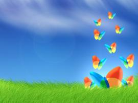 Vista Msn Butterfly Grass  Template Backgrounds