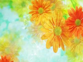 Wallpaper Flower Arts Template Backgrounds