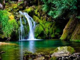 Wallpaper Nature Template Backgrounds