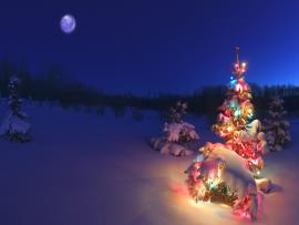 Wallpaper Of A Christmas Tree In Snowy Night Photo Backgrounds