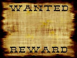 Wanted Poster Web Page  Backgrounds