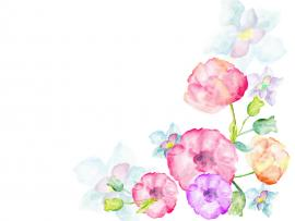 Watercolor Flowers Greetings Photo Backgrounds