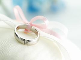 Wedding  1920x1200  #73757 Slides Backgrounds