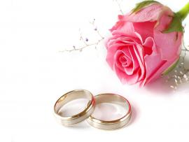 Wedding Design Pink Wedding Pink Rose and Rings Wallpaper Backgrounds