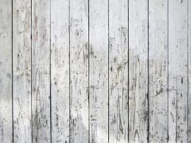 White Washed Wood Photos Picture Backgrounds