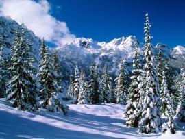 Winter Hd Winter Hd Winter Hd Winter Hd   image Backgrounds