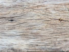 Wood Grain Textures  Backgrounds
