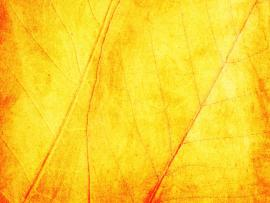 Yellow Texture image Backgrounds