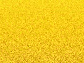 Yellow Texture Wallpaper Backgrounds