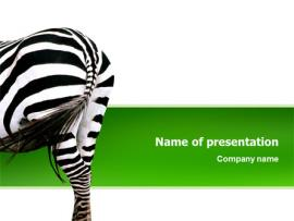 Zebra PowerPoint Template Frame Backgrounds