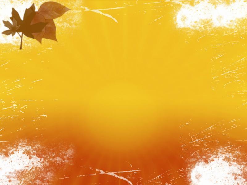 Autumn Photo PPT Backgrounds
