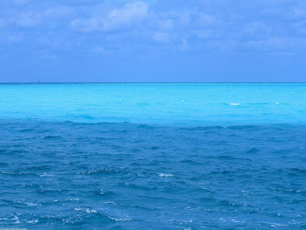 Blue Ocean Design PPT Backgrounds