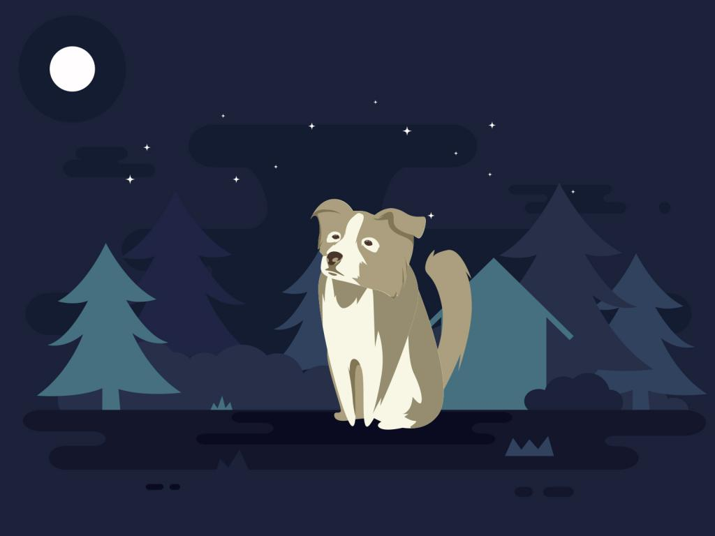 Dog and Moon PPT Backgrounds