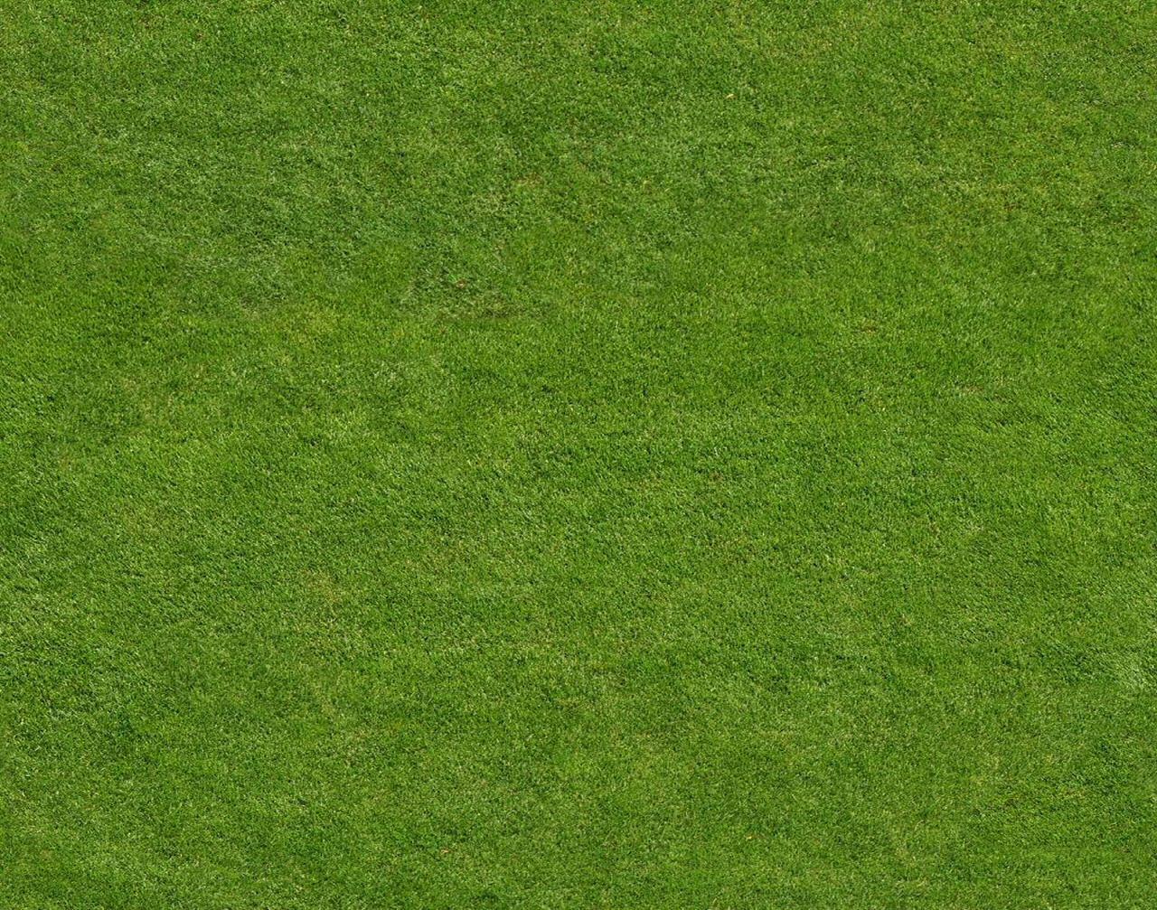 Green Field Sports Art PPT Backgrounds