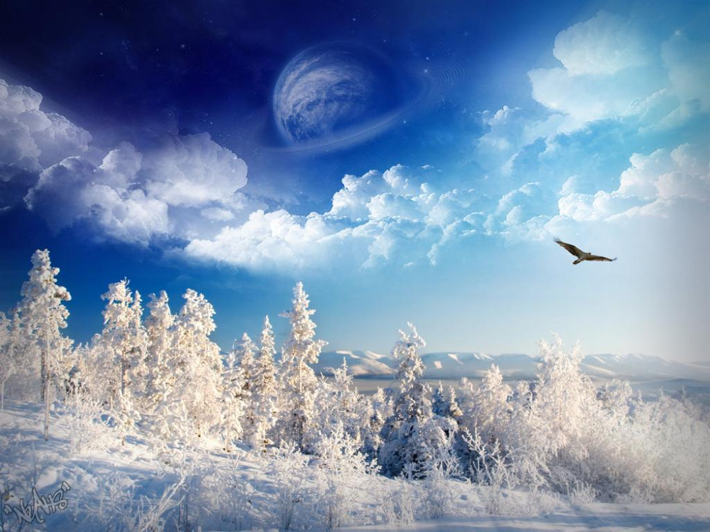 Winter Template PPT Backgrounds