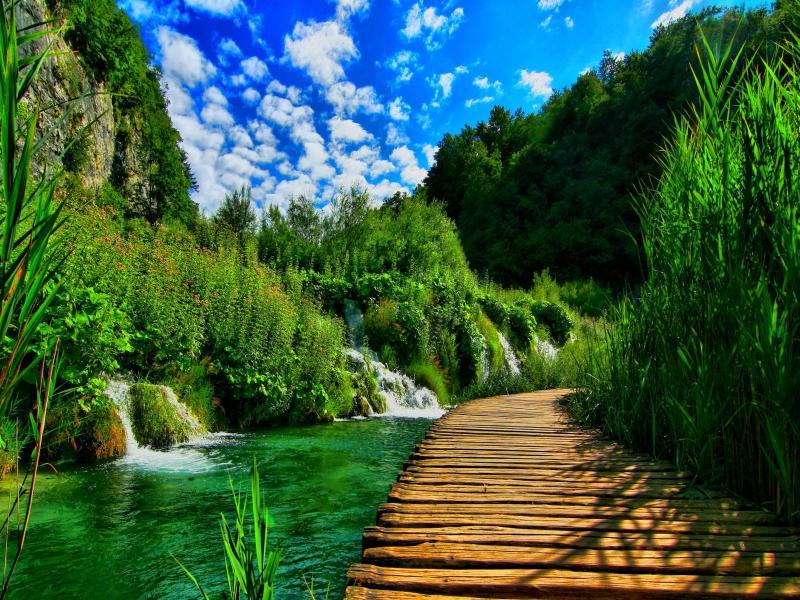 Amazing Nature Art Backgrounds