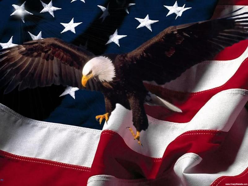 American Eagle Patriotic Photo Backgrounds