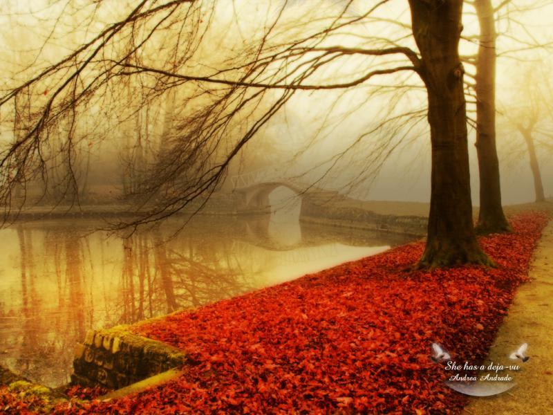 Autumn  Autumn (9444951)  Fanpop Clipart Backgrounds