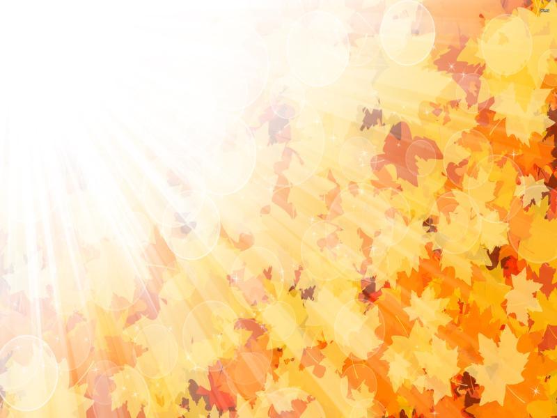 Autumn Leaf Backgrounds