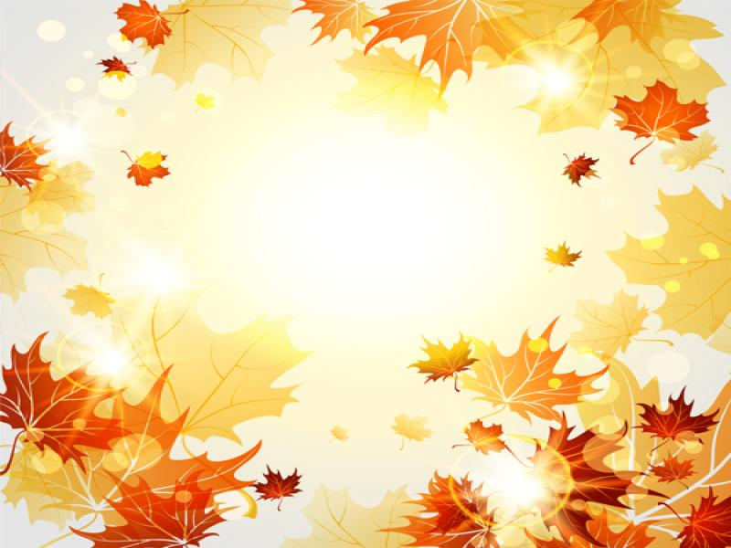 Autumn leaves bright autumn leaves vector 06 graphic backgrounds for autumn leaves bright autumn leaves vector 06 graphic backgrounds toneelgroepblik Image collections