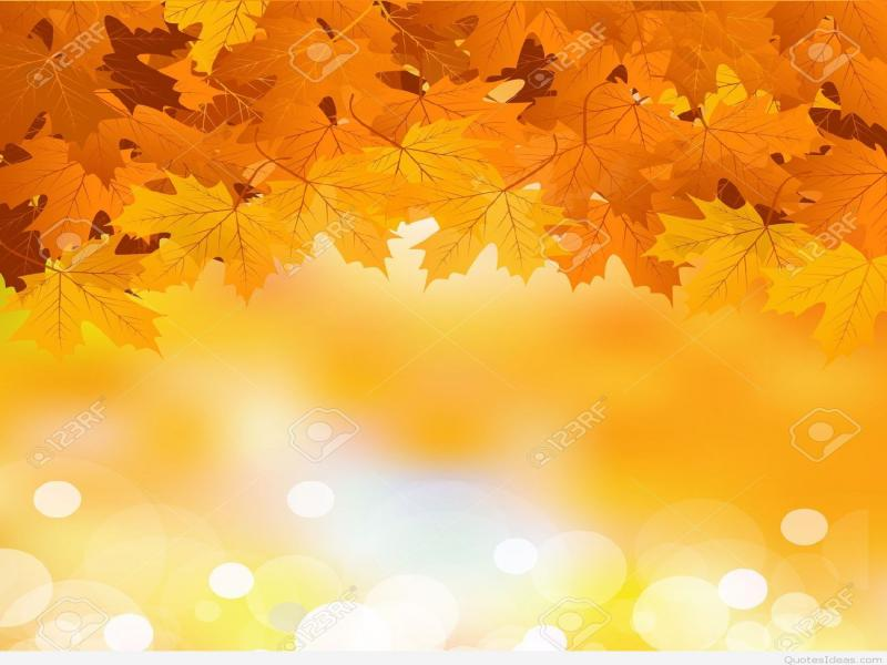 Autumn leaves photo backgrounds for powerpoint templates ppt autumn leaves photo backgrounds toneelgroepblik Gallery
