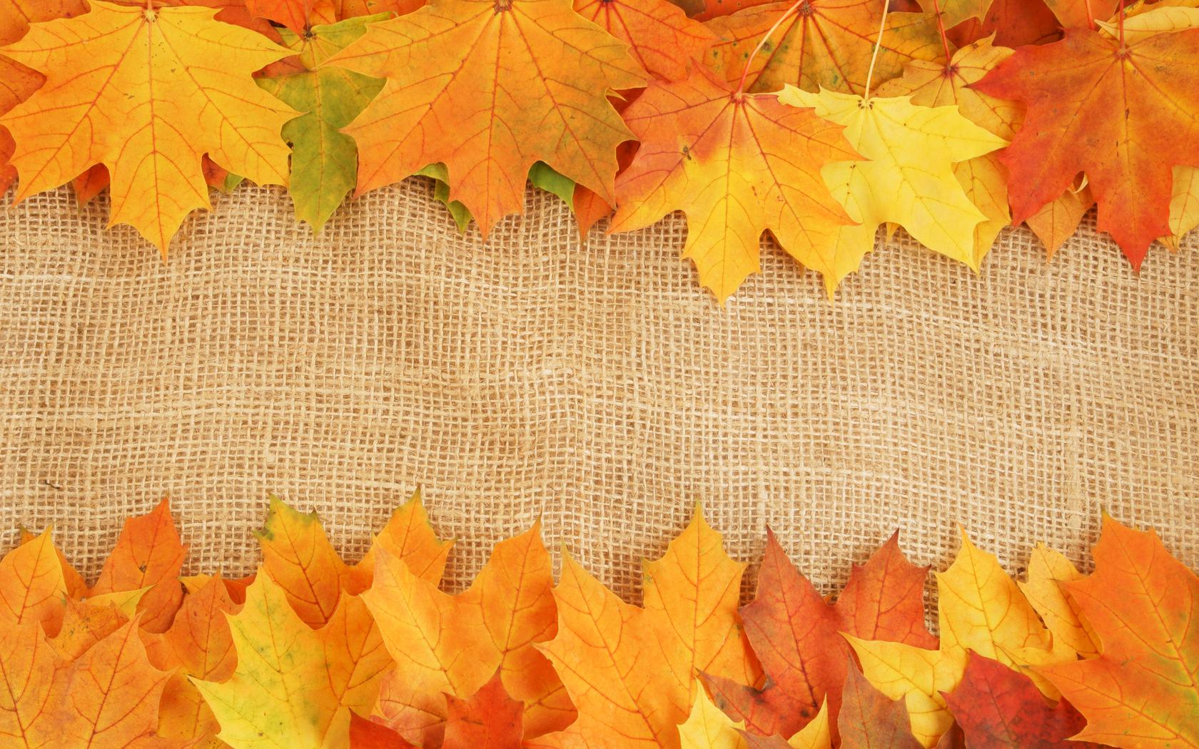 Autumn Leaves Textures Background Autumn Slides