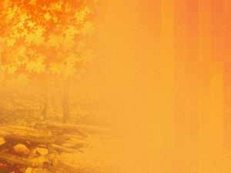 Autumn Presentation Backgrounds