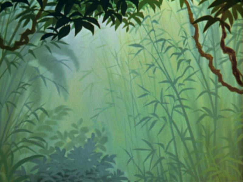 Backdrop Jungle Template Backgrounds